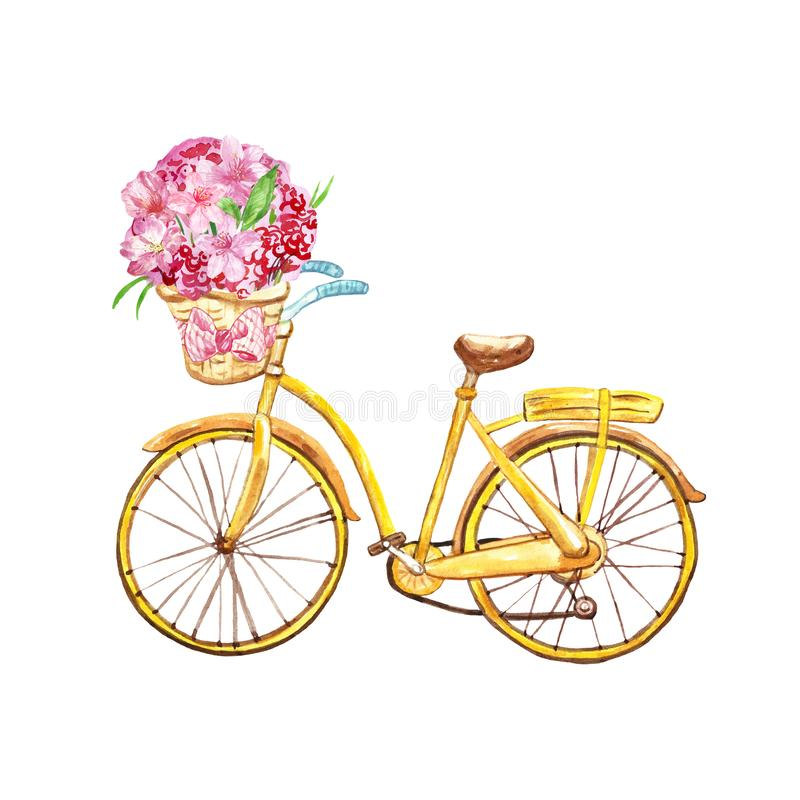 Spring illustration with watercolor yellow bicycle and pink flowers in a basket, isolated on white background. Watercolor yellow bicycle with basket, isolated vector illustration