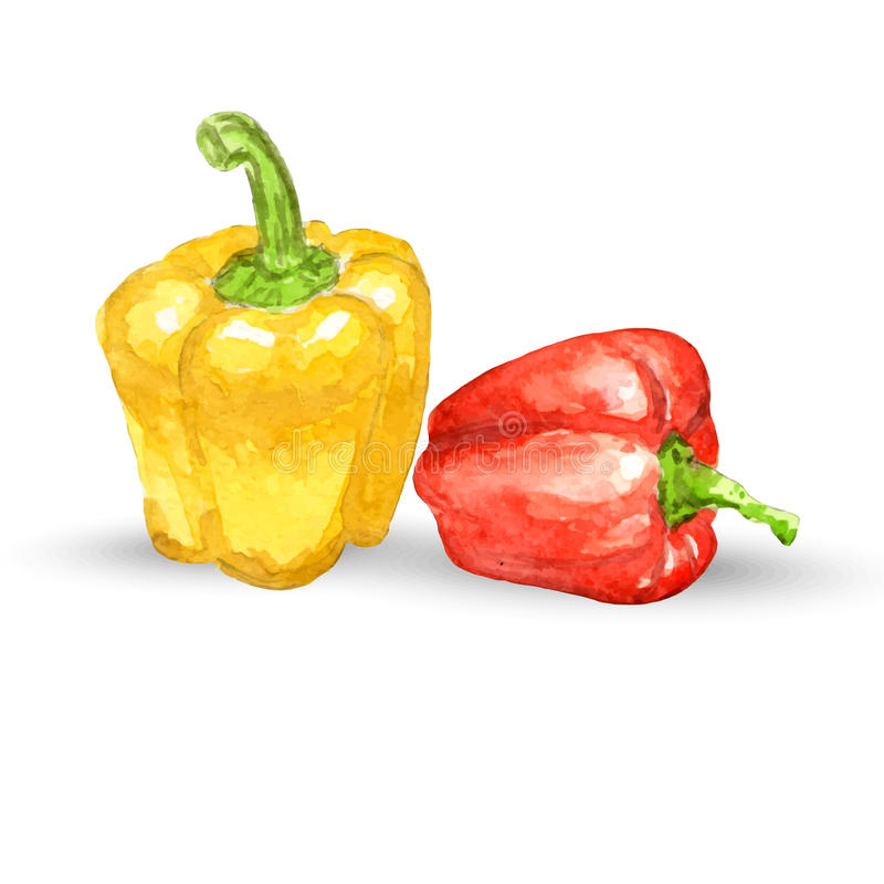 Watercolor yellow and red peppers royalty free illustration