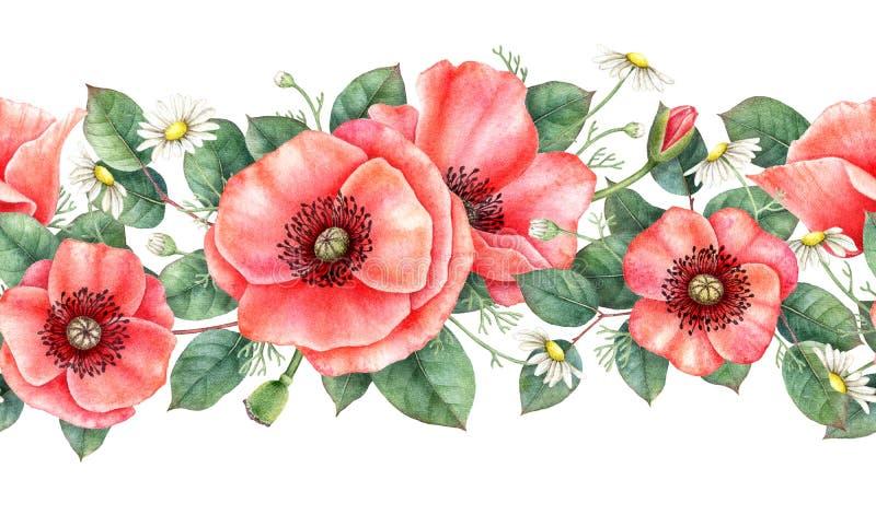 Watercolour bezszwowa granica z maczkiem, chamomile i liśćmi, Ręka rysująca botaniczna ilustracja ilustracja wektor