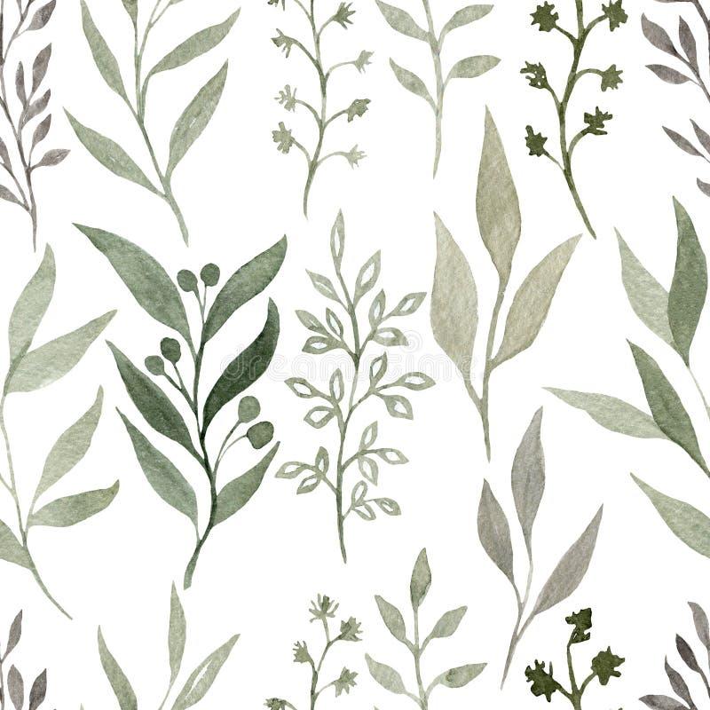 Watercolour bezszwowy wzór z elementami rośliny Ręka rysująca watercolour tekstura Śliczny projekt dla tapety, tkanina ilustracji