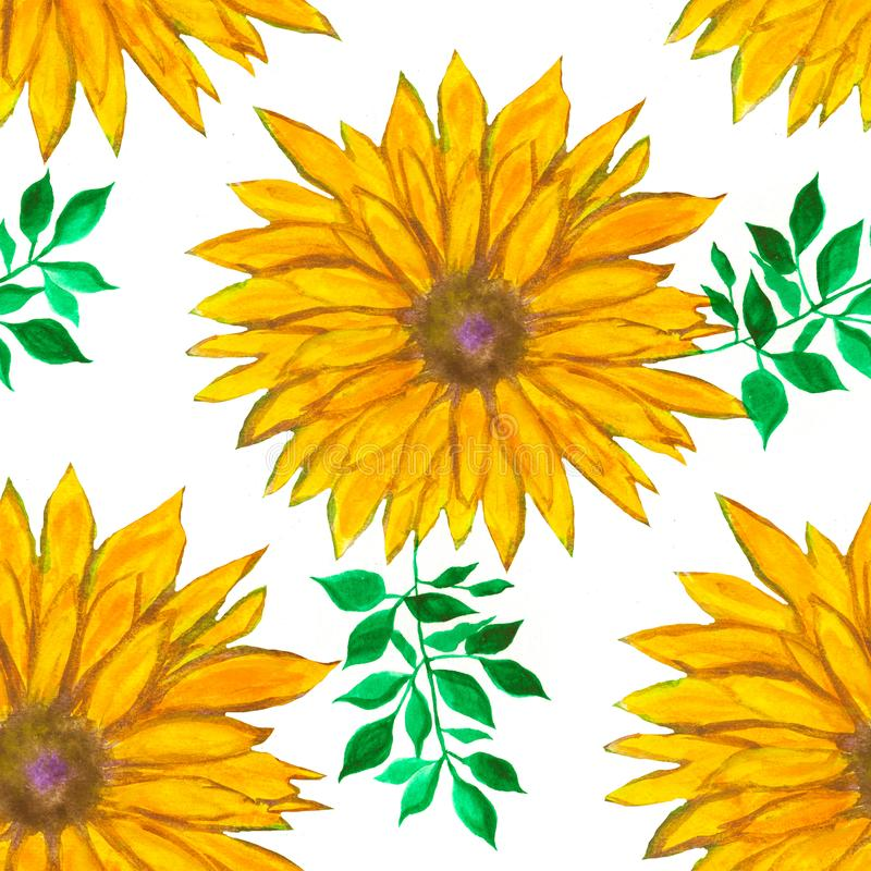 Watercolour floral pattern with yellow flowers. Colorful print. Abstract background. royalty free illustration
