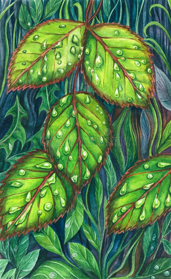 Watercolour Fresh Green Leaves with Dew. Watercolor of cute pretty spring green leaves lying on the ground. Natural vibes stock illustration