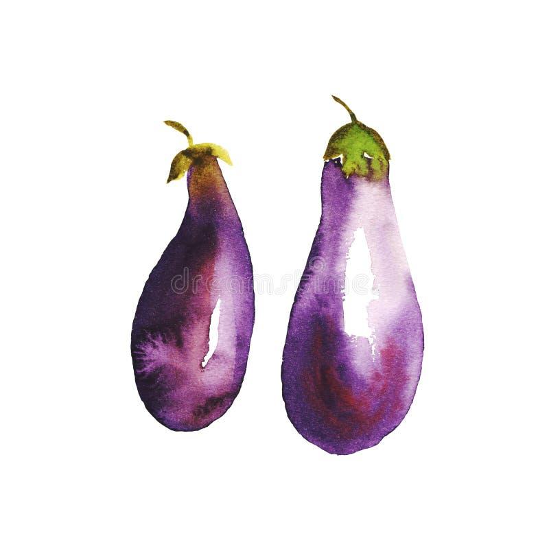 Watercolour gemalte Aubergine violette natürliche handgemalte Gemüseillustration Zwei Auberginen, Papierbeschaffenheit, abstrakte lizenzfreie abbildung