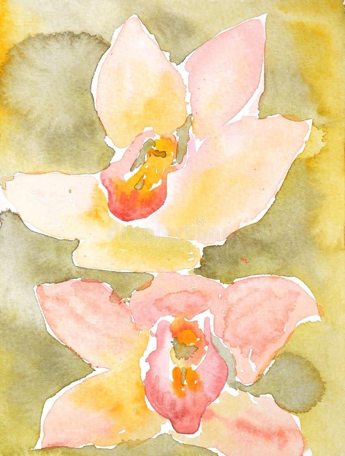 Watercolour het schilderen van twee mooie, roze orchideebloemen, op gele en groene achtergrond stock illustratie