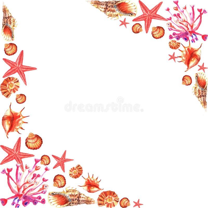 Watercolour rama różowi korale, skorupy, gwiazda ilustracja wektor