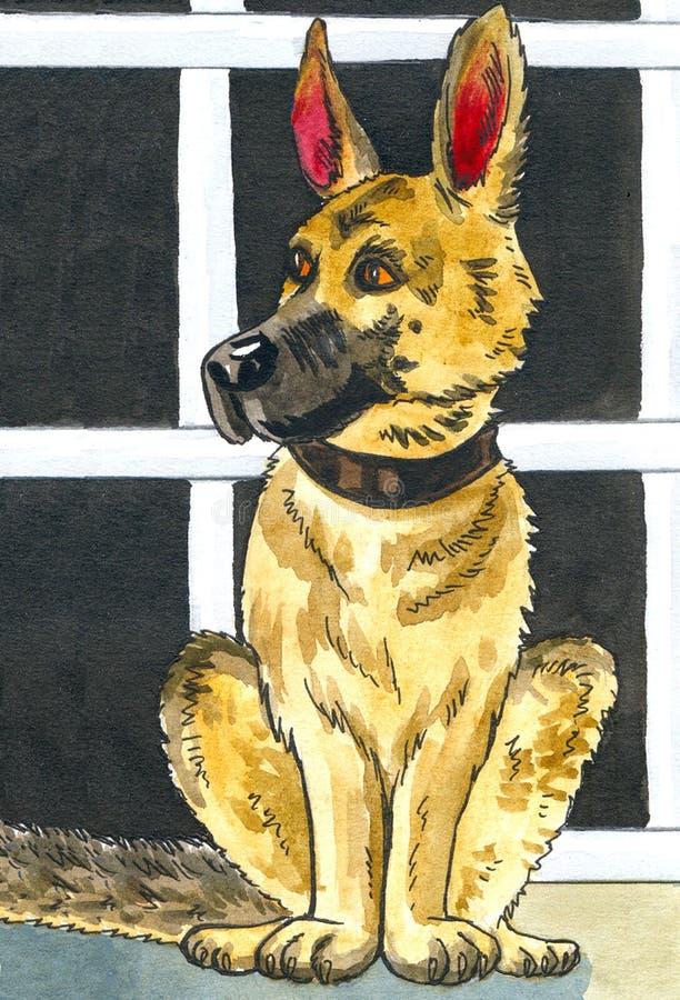 Watercolour rysunkowy Sheepdog ilustracji