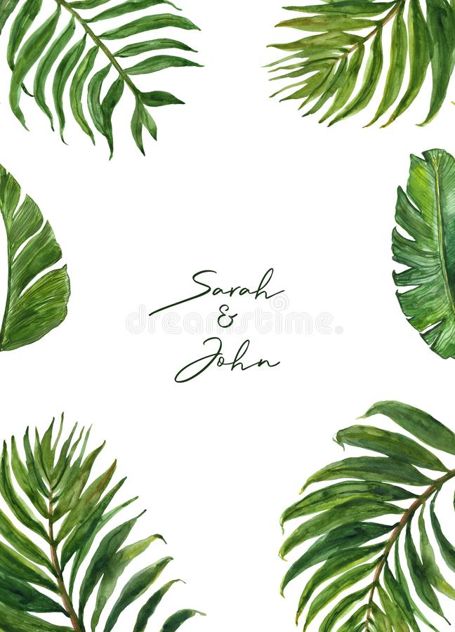 Watercolor tropical leaves border with palm foliage on white background. Modern exotic plants frame for wedding, invitations royalty free illustration
