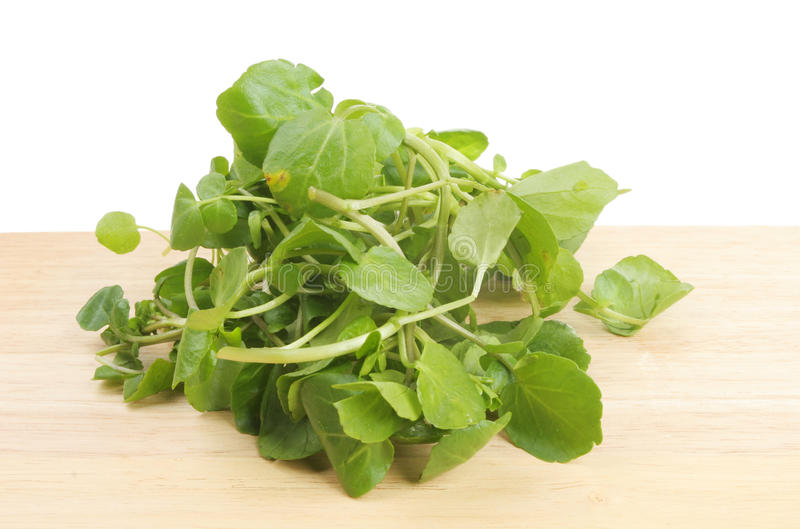 Watercress. On a wooden board stock photography