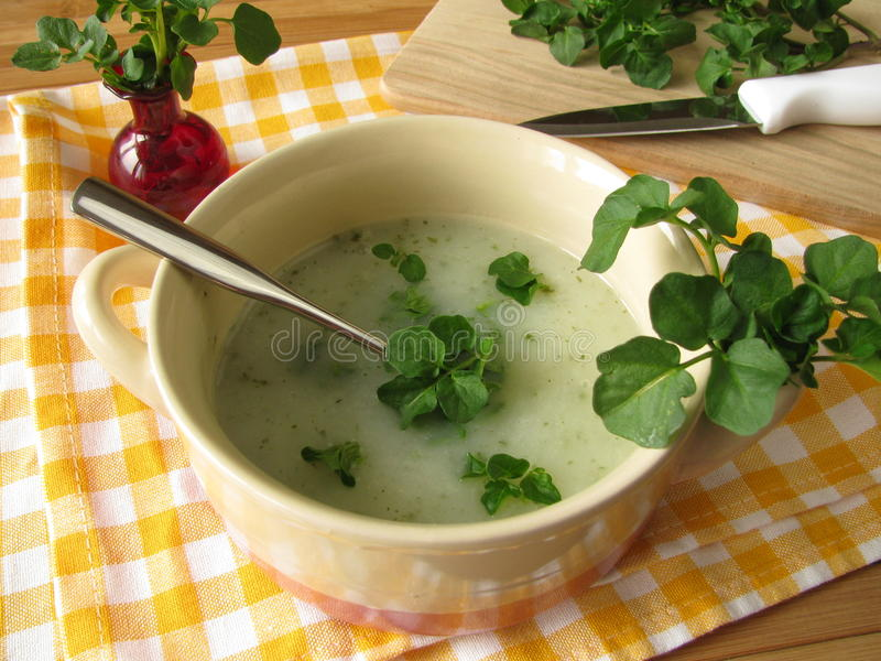 Watercress soup. With fresh leaves stock photo