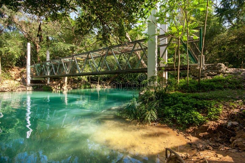 Waterdaling in lentetijd in diepe regenwoudwildernis die wordt gevestigd royalty-vrije stock foto's