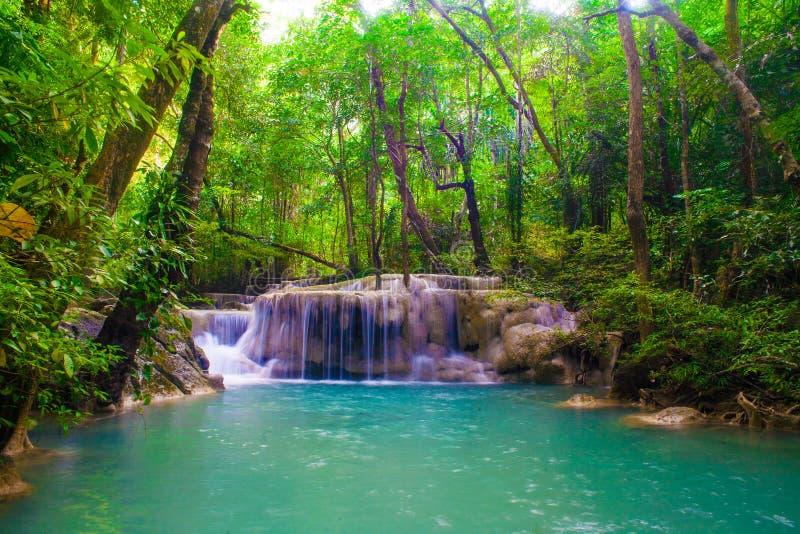 Waterdaling in lentetijd in diepe regenwoudwildernis die wordt gevestigd royalty-vrije stock afbeelding