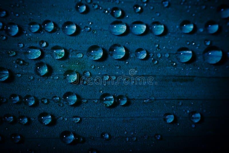 Waterdaling op vers blauw blad met vage achtergrond stock afbeelding