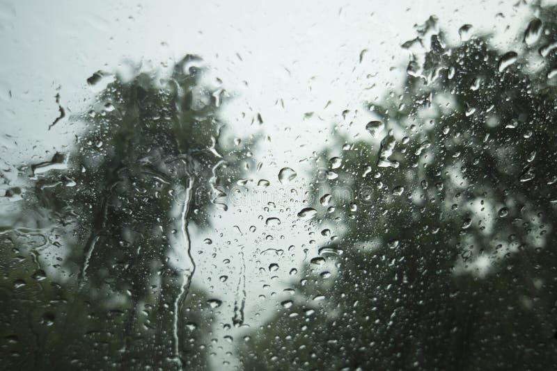 Waterdaling van regen op een glas, vage boom op achtergrond, selectieve nadruk stock afbeeldingen
