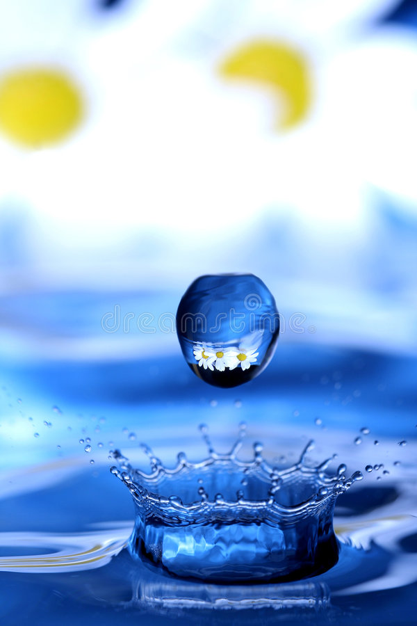Download Waterdrop Con La Flor Adentro Foto de archivo - Imagen de azul, flor: 1283926