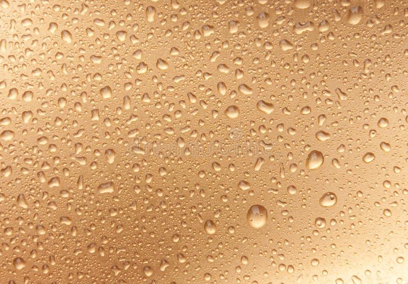 Waterdrops dourados fotos de stock
