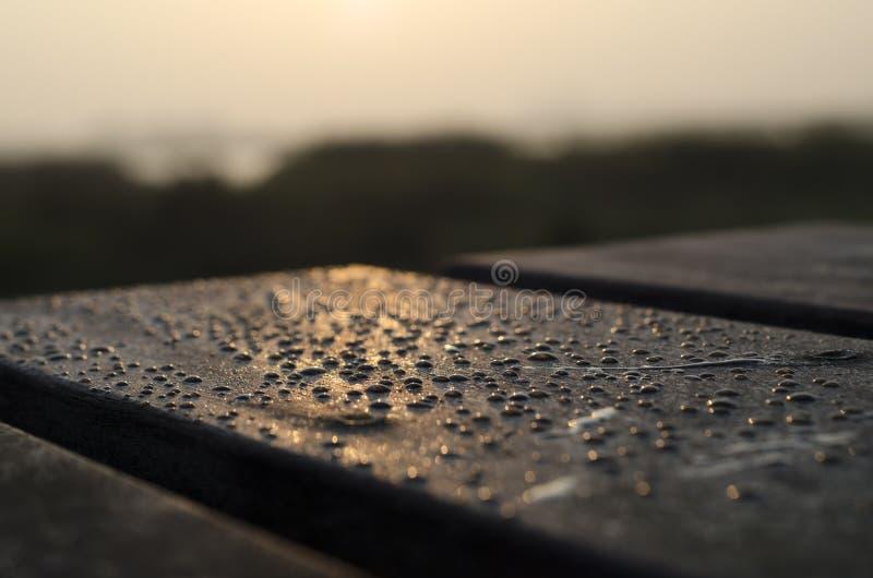 Waterdrops na frente do nascer do sol imagem de stock