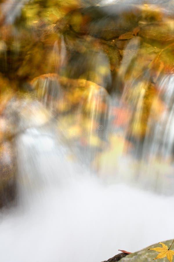 waterfal的秋天 免版税库存图片