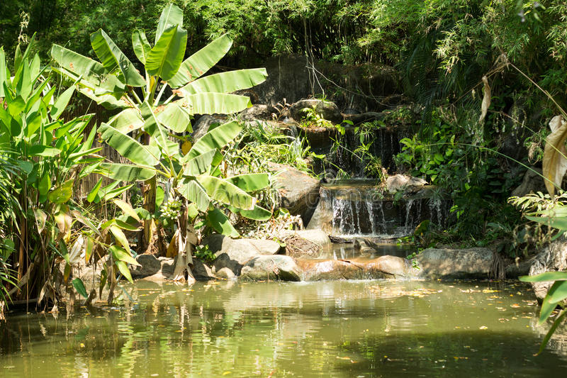 Waterfal in foresta profonda immagini stock libere da diritti