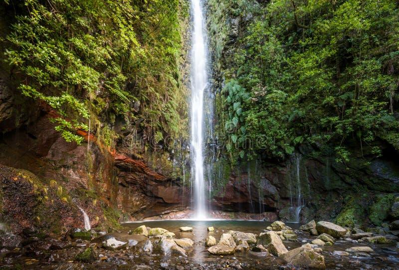Waterfal på levadaen går 25 springbrunnar, madeiraön arkivfoton