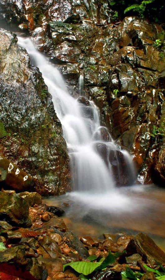 Download Waterfall stock image. Image of beautiful, moisture, meditation - 11038749