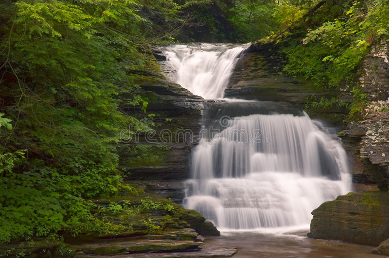 Download Waterfall stock photo. Image of plants, trees, moss, boulders - 172436