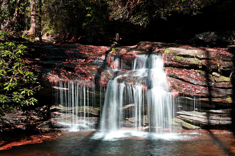Download Waterfall stock image. Image of canal, botanical, flow - 18045705