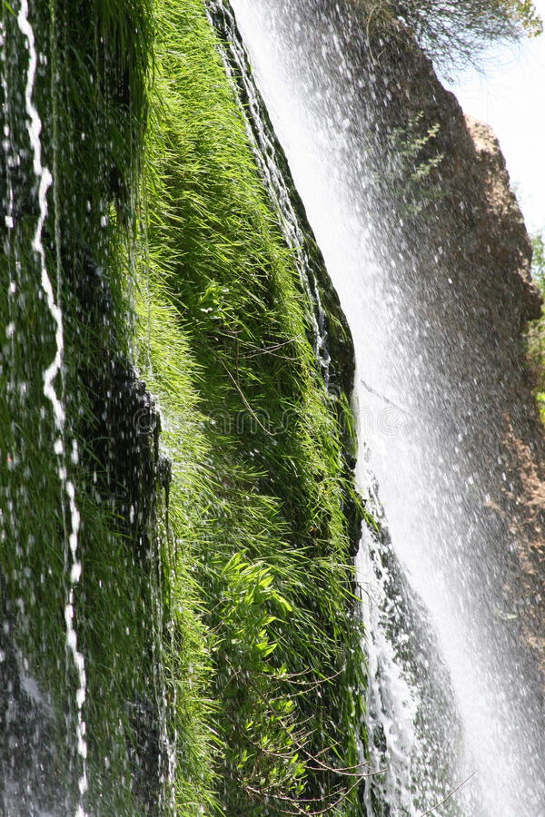 Download Waterfall stock photo. Image of grass, sprays, height - 23834486