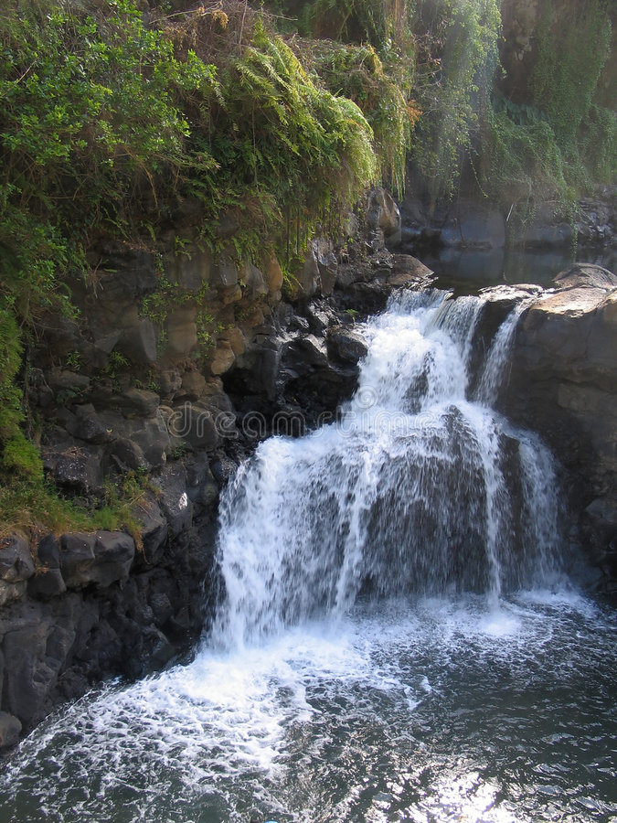 Download Waterfall stock photo. Image of fall, caribbean, water, landscape - 24008