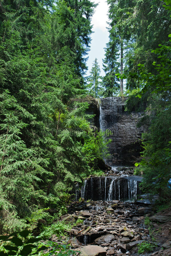 Download Waterfall stock photo. Image of outside, cascade, green - 24385160