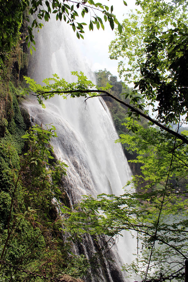 Download Waterfall stock photo. Image of green, asia, jungle, trek - 24772522