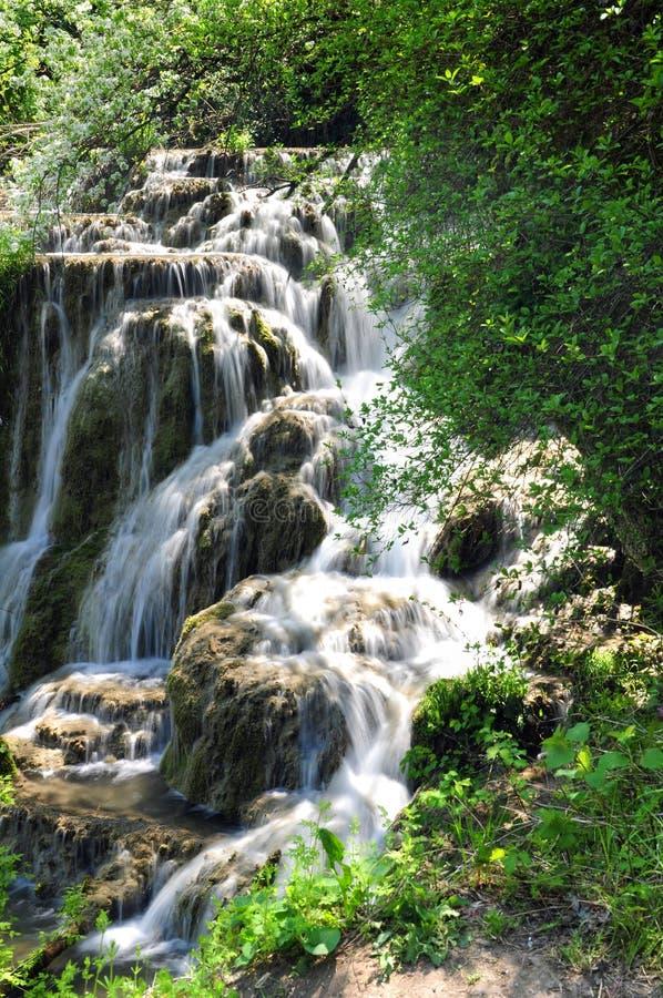Download Waterfall stock photo. Image of shutter, foliage, water - 25480980