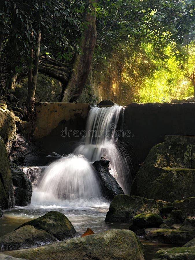Download Waterfall stock photo. Image of jungle, outdoors, waterfall - 25864562