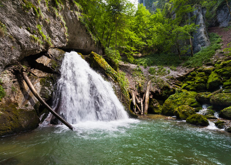 Download Waterfall stock image. Image of mountain, plant, creek - 26073789
