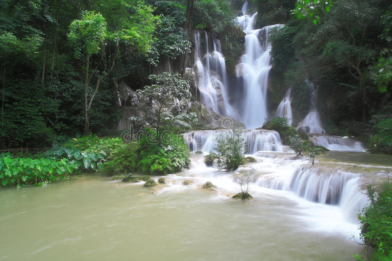 Download Waterfall stock photo. Image of fresh, forest, park, green - 26299718