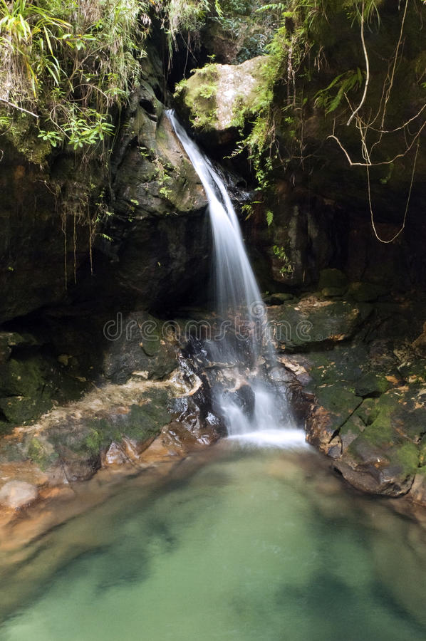 Download Waterfall stock image. Image of green, fresh, rainforest - 26605097