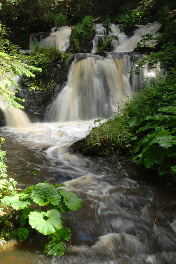 Waterfall. In the Roetenbach-Gorge, Black Forest, Germany royalty free stock photo