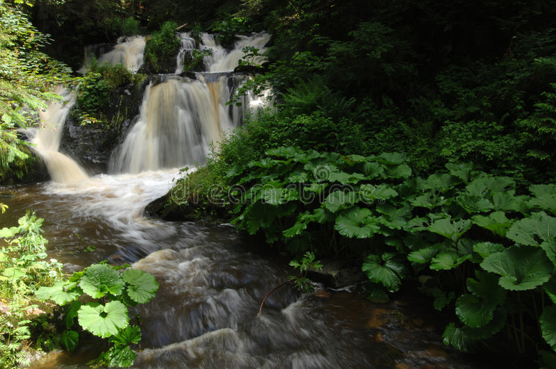 Waterfall. In the Roetenbach-Gorge, Black Forest, Germany stock images