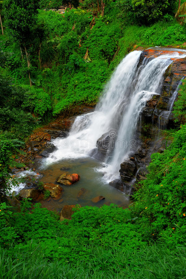 Download The waterfall stock image. Image of falling, rainforest - 27945871