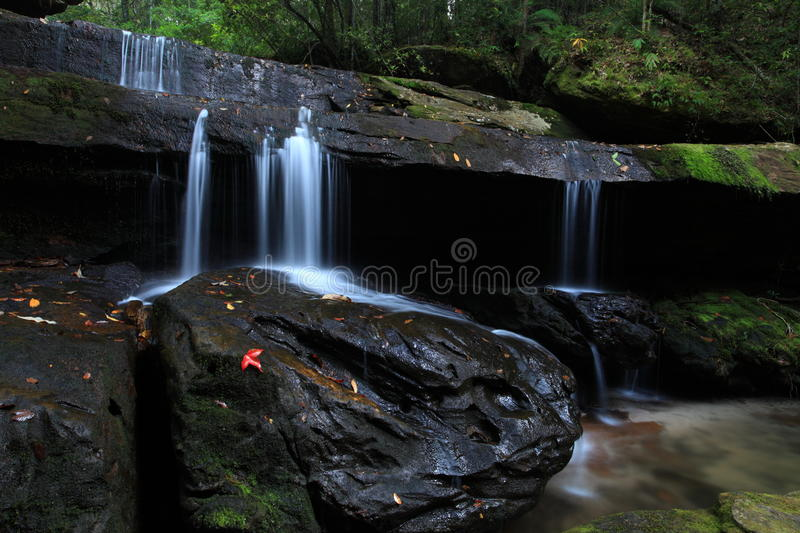 Download Waterfall stock photo. Image of element, evergreen, dense - 27949814