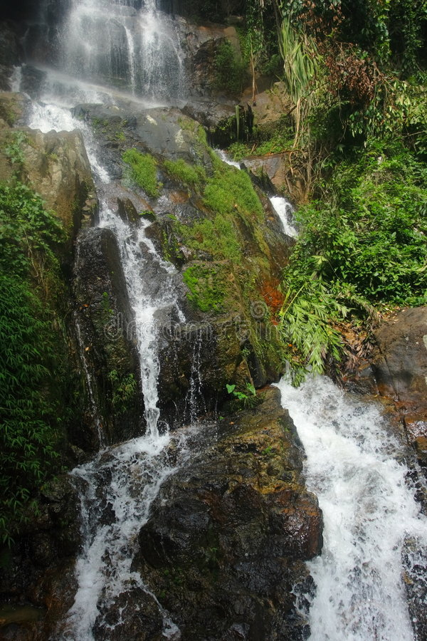 Waterfall. royalty free stock images