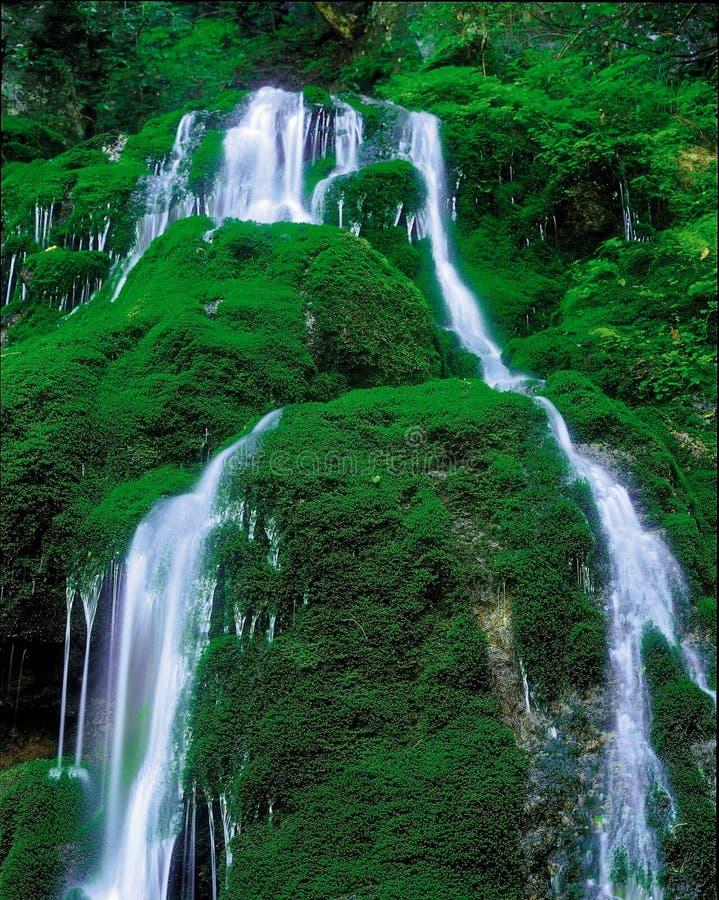 Free Waterfall Royalty Free Stock Photo - 765655