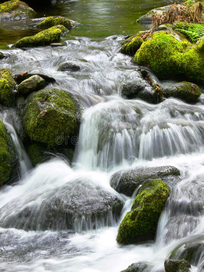 Download Waterfall stock photo. Image of spring, fresh, creek, stream - 9462114