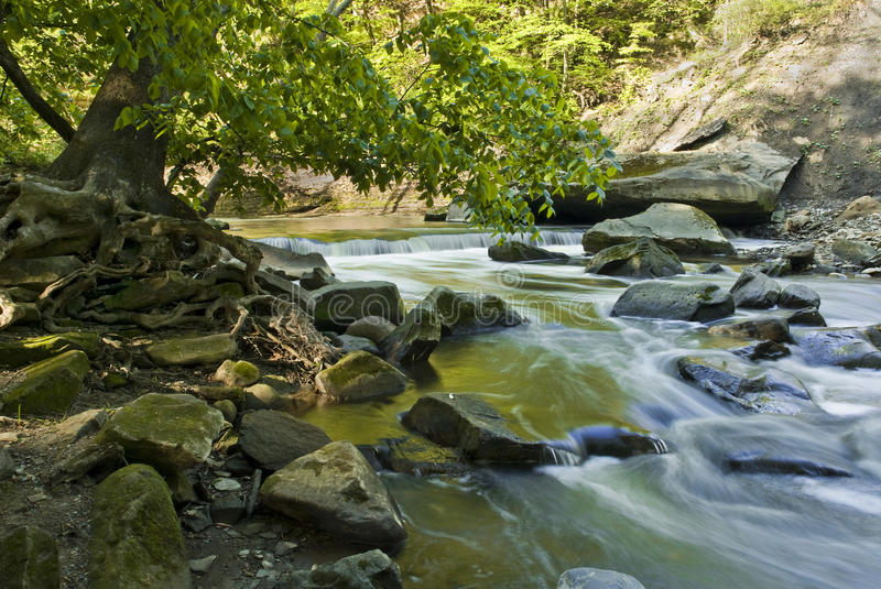 Download Waterfall stock image. Image of nature, rocks, wild, ecology - 9691981