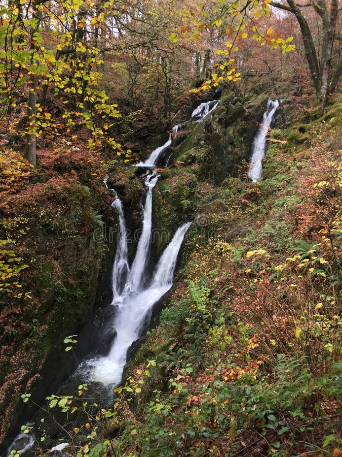 Waterfall amongst autumn leaves royalty free stock photography