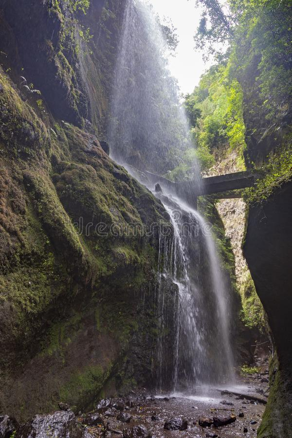 Free Waterfall At Los Tilos Rain Forest. La Palma. Canary Islands. Stock Photography - 144383552