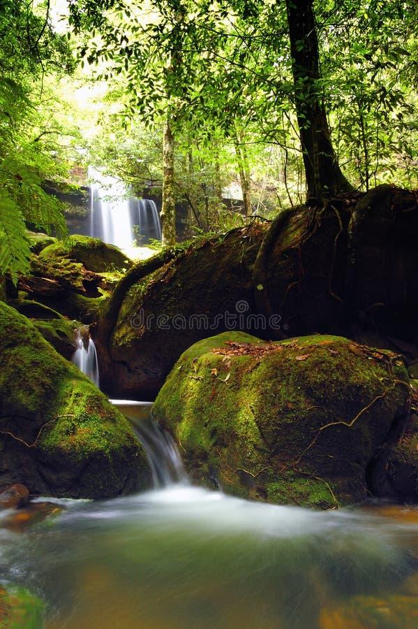 Waterfall atphu kradung national park. royalty free stock photo