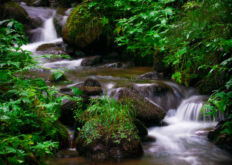Download Waterfall Austria stock photo. Image of clear, flood, spring - 3212844