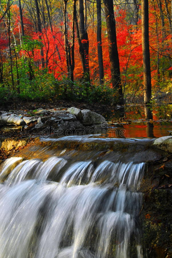 Download Waterfall in autumn stock image. Image of mountain, harmony - 9533845