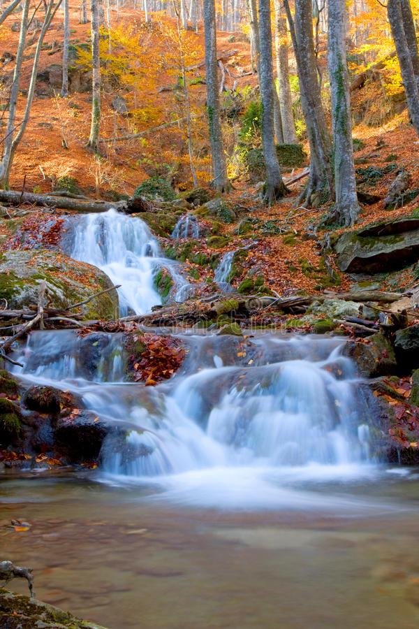 Waterfall in autumn forest royalty free stock photos