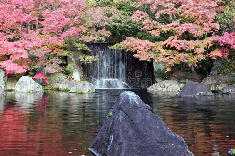 Waterfall from the autumn garden with red leaves and the rock in the water. stock images